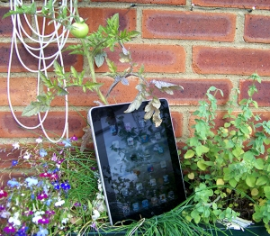iPad in garden picture