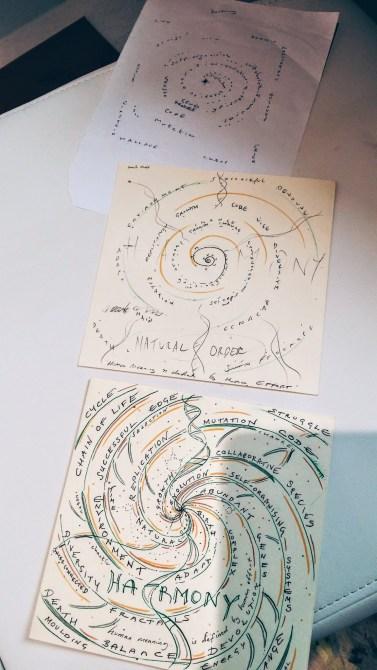 evolution-spiral