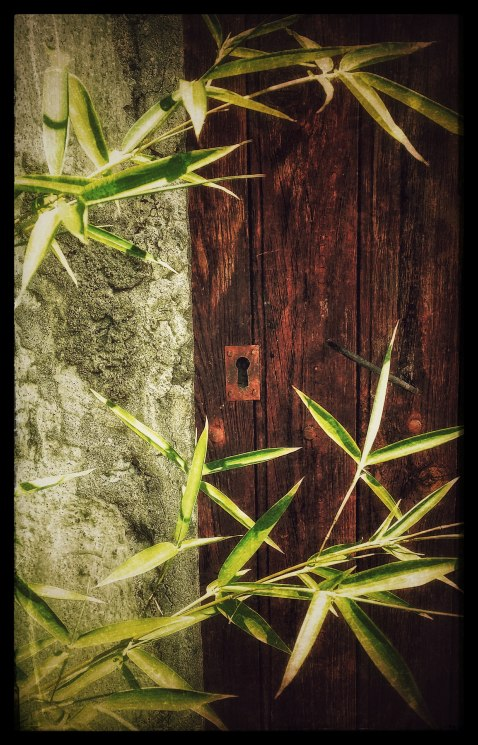 keyhole and bamboo