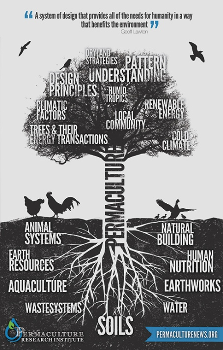 Permaculture Tree